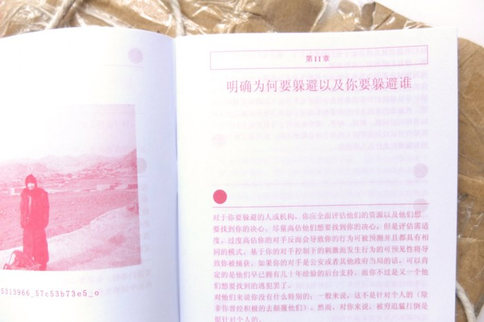 HowtoDisappearinChina02
